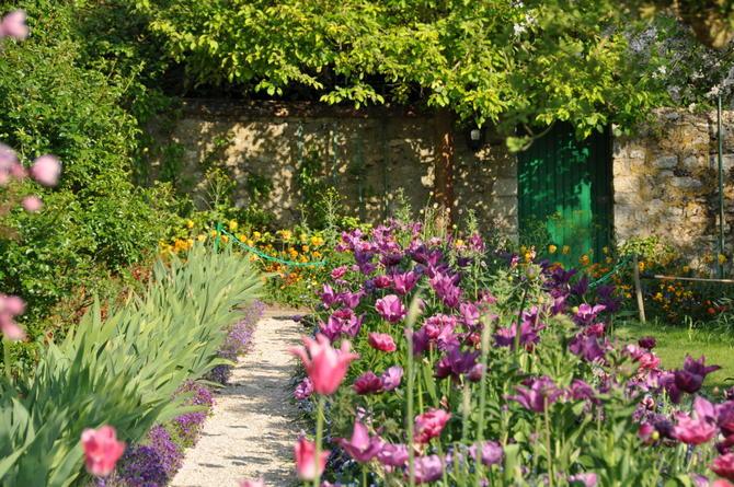 Estate in arrivo: i fiori più belli per il tuo balcone e il tuo giardino